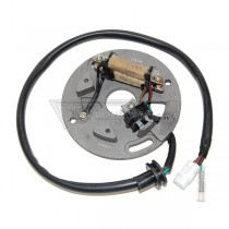 Alternador / Stator Electrosport ESC140