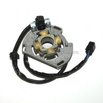 Alternador / Stator Electrosport ESC221
