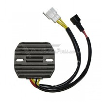 Regulador / Regulator Electrosport ESR105
