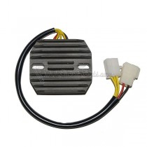Regulador / Regulator Electrosport ESR170