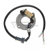 Alternador / Stator Electrosport ESC1631