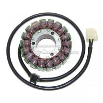 Alternador / Stator Electrosport ESG031