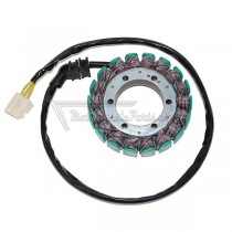 Alternador / Stator Electrosport ESG071
