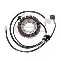 Alternador / Stator Electrosport ESG079